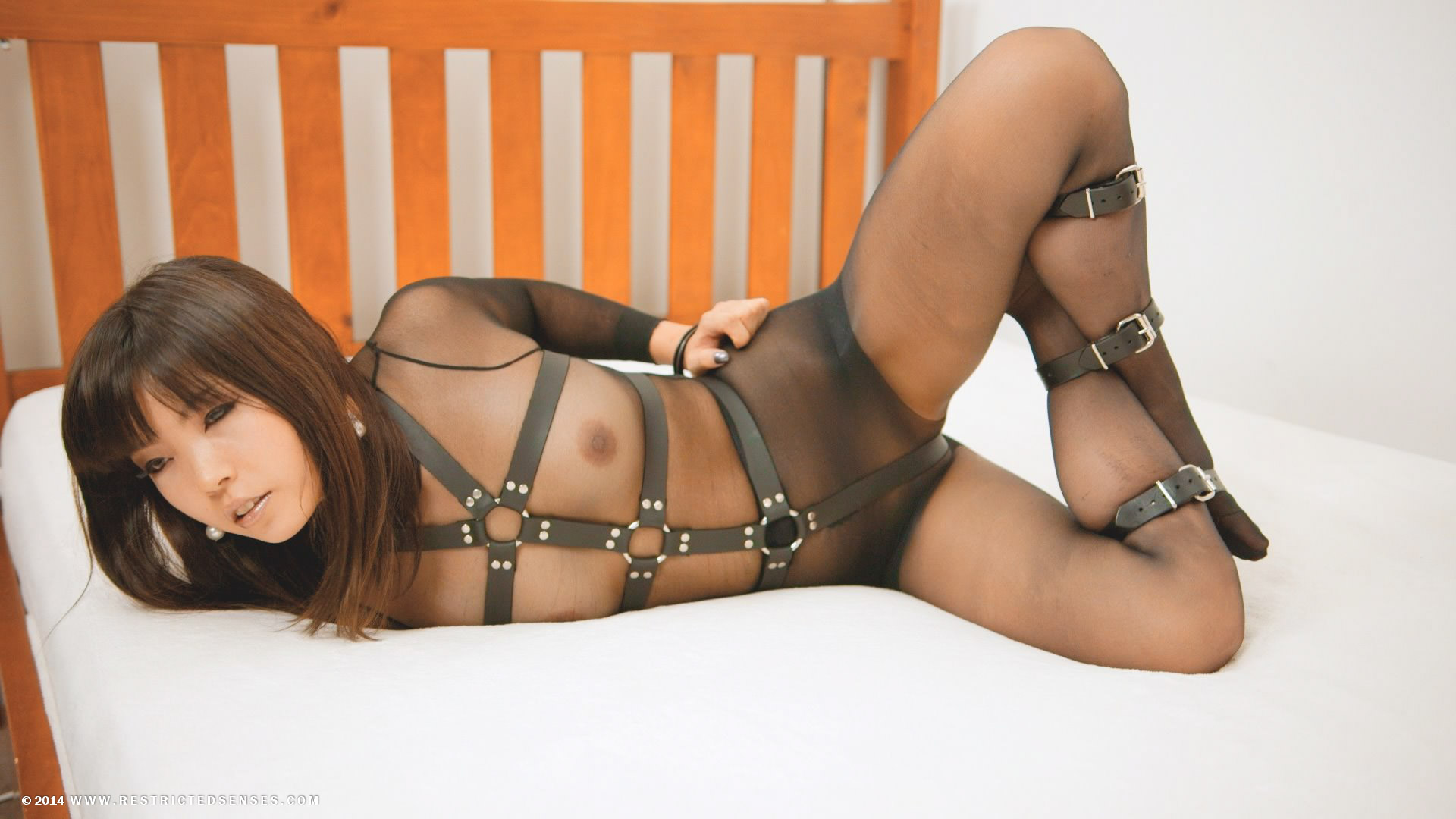 Bodystocking Bondage 29